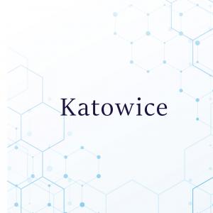 Test wodorowo-metanowy Katowice